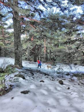 ruta-pico-del-nevero-4